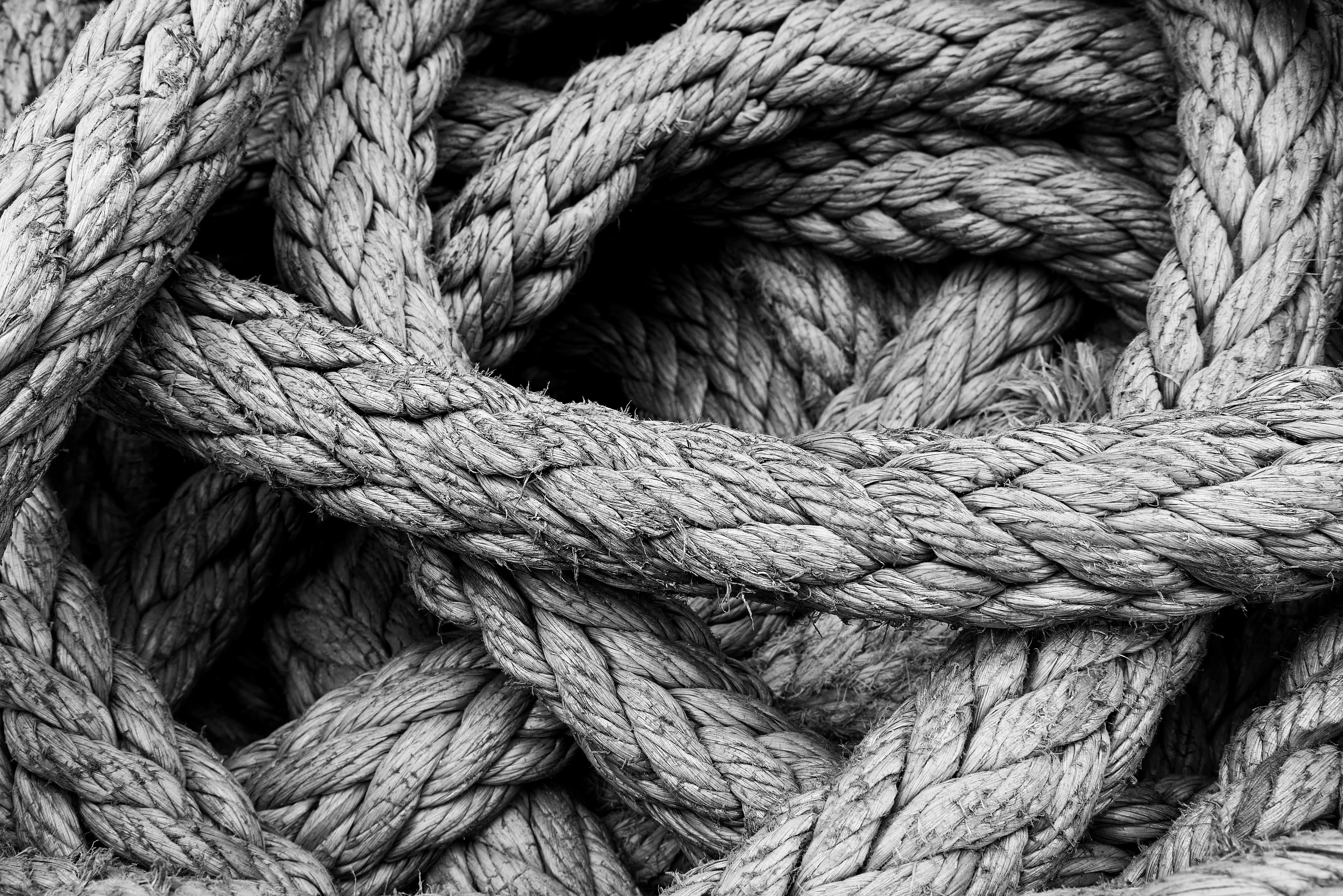 Resilience – it's more important in a leadership role than